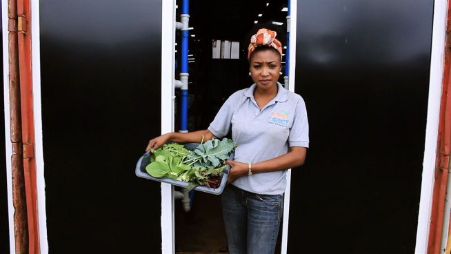 Hydrokulturen: Nigerianerin mit grünem Daumen