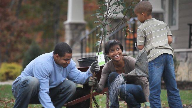 Bäume pflanzen gegen den Klimawandel