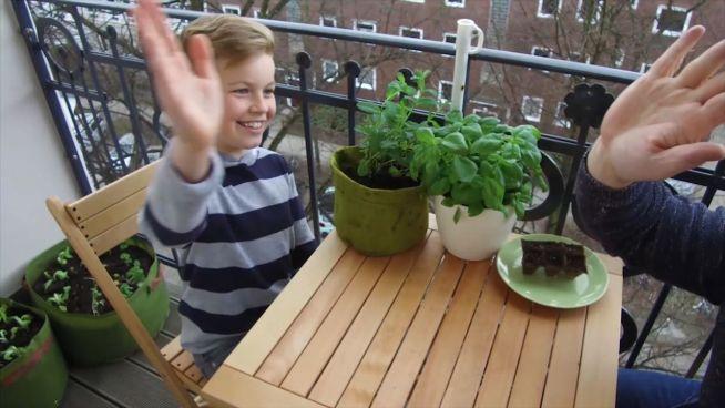 Paradies auf dem Balkon: Tipps für den eigenen 'Garten'