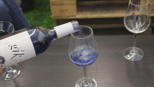 Blaumacher: Blauer Wein ist der  Sommerhit aus Spanien
