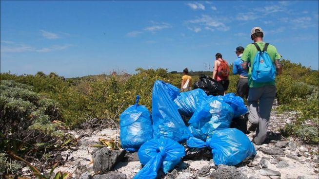 Müllsammeln ist neuer viraler Trend