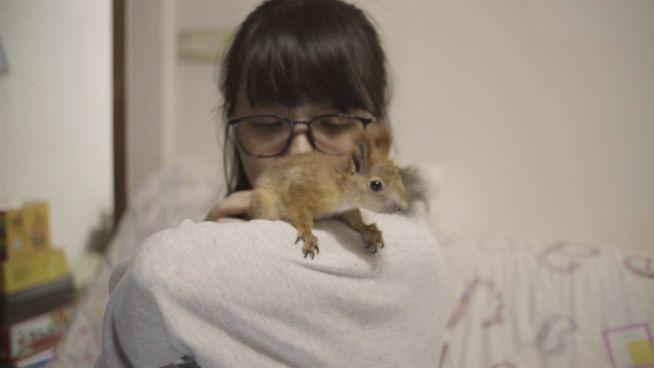Süßes Zusammenleben: Liu beherbergt vier kleine Nager
