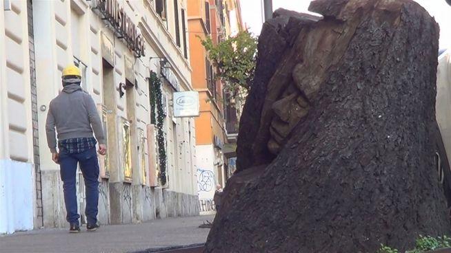 Rom verschönert: Künstler haucht toten Bäume Leben ein